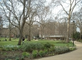 Рассел-сквер (Russell Square) 5
